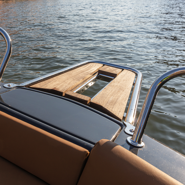 dolphin striker magonis electric boat